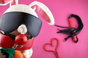 Bondage accessories and how to have the most fun with your partner